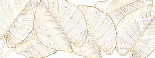 Fototapeta złote liście, natura, złoto, minimalizm, liście monstera