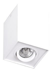 Basic Square White C0070 plafon Max Light small 0