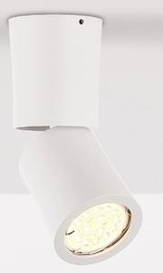 Dot C0123 lampa sufitowa/plafon biały Max Light small 0