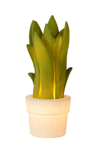 Lucide SANSEVIERIA 13522/01/33 small 0