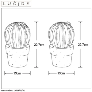 Lucide CACTUS 13524/01/31 small 1
