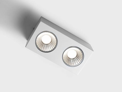 Oprawa sufitowa FLASS 2 LED - biały