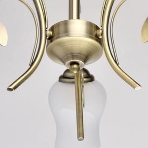 Lampa wisząca Flora Flora 3 Brązowy - 256018103 small 9