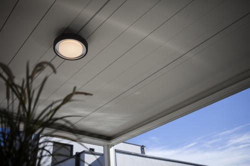 ORIGO Wall & Ceiling Functional Bulkhead & Ceiling WiZ