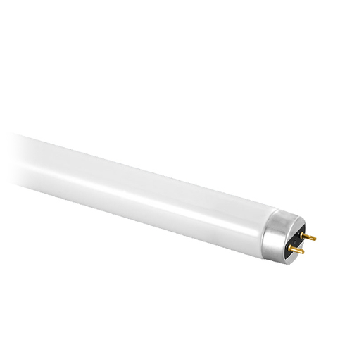 Świetlówka FT8 58W 6400K