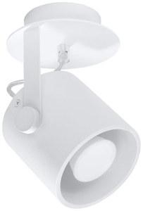 Biały Plafon LAROSA 1 SL.0311 small 0