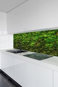 Fototapeta Mech, Chrobotek Reniferowy na Ścianę, zielone ściany w domu, dekoracja small 1