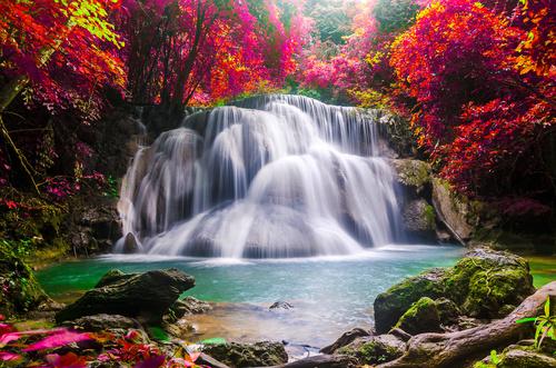 Fototapeta na wymiar wodospad, krajobraz, czerwone liście drzew, skały
