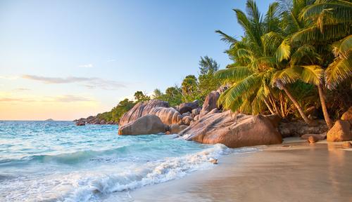 Fototapeta plaża, zachód słońca nad morzem, fale, skalisty brzeg, palmy kokosowe