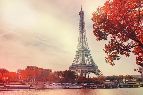 Fototapeta wieża eifla, czerwone liście drzew, widok z nad Sekwany