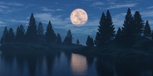 Fototapeta do sypialni księżyc, las, pochmurne niebo, odbicie w tafli wody