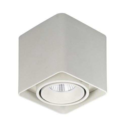 Biała Lampa Natynkowa Bonnie LED