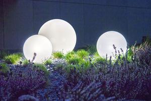 Zestaw dekoracyjne kule ogrodowe 25 cm 30 cm 40 cm + 3x Led RGBW + Pilot small 5
